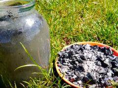 Древесная зола как удобрение для огорода — состав и свойства, как применять